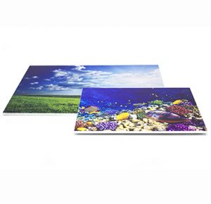 Printed Foamex Poster Boards